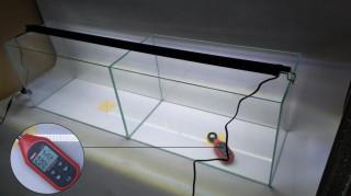 Test oświetlenia akwariowego LED czterech różnych producentów