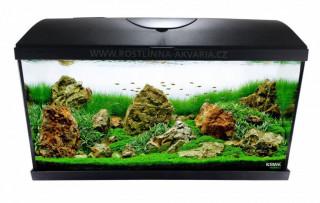 Jak wybrać akwarium lub zestaw akwariowy
